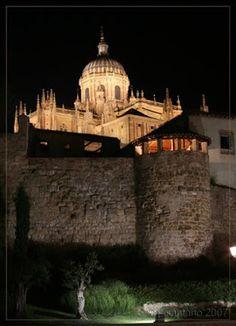 salamanca única: Muralla romana y catedral.