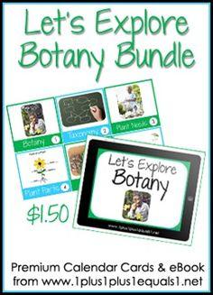 Let's Explore Botany Button