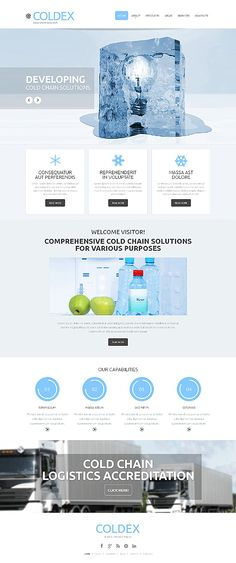 Template 48020 - Ice Cold  Responsive Website Template