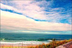 by Swapna Karpuram.Delaware Beach