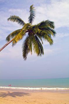 Coconut Beach, Khao Lak, Thailand