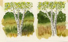 Jake Marshall watercolor. Two miniature watercolors of birches from my sketchbook.