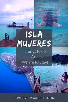 Isla Mujeres is rated one of the best beach islands in Mexico. This little island has plenty of things to do along with gorgeous hotels to stay at. Not to mention popular snorkeling locations as well as tours to swim and dive with whale sharks. Read all that Isla Mujeres has to offer! #islamujeres #mexico #islandvacations