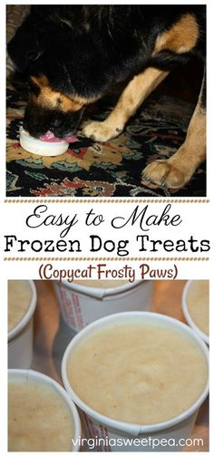 Copycat Frosty Paws - Easy to Make Frozen Treat for your Dog - Get the easy recipe to make these fro Homemade Dog Treats, Healthy Dog Treats, Dog Treat Recipes, Dog Food Recipes, Frosty Paws Recipe, Puppy Ice Cream, Frozen Dog Treats, Dog Treat Jar, Dog Care Tips
