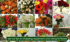 Flower Arranging 101 Tips for arranging your own flowers