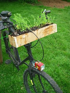 Bicycle Handlebar Garden, always have the freshest herbs at the picnic.