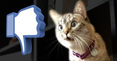8 Facebook Contest Ideas You Can Run on Your Timeline TODAY