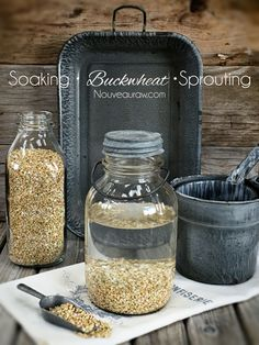 How to Sprout and Use Buckwheat Groats (Nouveau Raw) Raw Food Recipes, Vegetarian Recipes, Healthy Recipes, Best Food Dehydrator, Great Grains, Buckwheat Recipes, Paleo, Candida Diet, Back To Nature