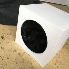 So kannst du deiner Katze diese kuscheligen Höhlen bauen.