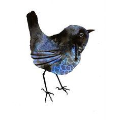 Blue – bird – Emma Wiesenekker by Oliver – Bird Supplies Little Birds, Love Birds, Beautiful Birds, Watercolor Bird, Watercolor Animals, Bird Illustration, Illustrations, Art Aquarelle, Arte Popular