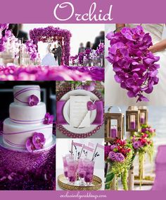 orchid_wedding_color.jpg 1,000×1,200 ピクセル