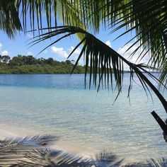 Playa de las Estrellas isla Colón. Una playa de aguas tranquilas ideal para relajarse.  Starfish Beach Colon Island. A calm water beach ideal for relaxing.