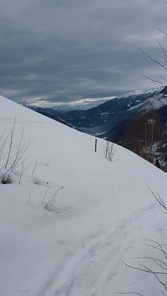 Pinzolo, Trentino