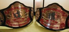 World Heavyweight Championship, Professional Wrestling, Mixed Martial Arts, Ufc, Belts, Tabletop Rpg, Reflexology, Mafia, Star