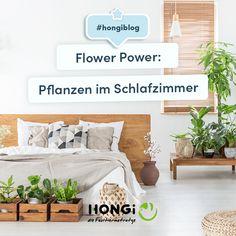 Mein Schlafzimmer, meine grüne Oase! 🌴😴 Welche Pflanzen perfekt fürs Schlafzimmer geeignet sind plus Aufklärung der größten Mythen rund um Zimmerpflanzen und Schlaf: Jetzt am Blog! 💚 #zimmerpflanzen #schlafzimmer #einrichtung #interieur #tipps #pflanzen #schlaf #gesundheit #hongiblog #hongidiefaultiermatratze #inspo Flower Power, Entryway Bench, Blog, Furniture, Home Decor, Floral Bedroom, Bedroom Interiors, Indoor House Plants, Round Round