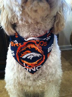 super popular 25250 abb69 33 Best Dogs Favorite Team! images in 2016 | Denver broncos ...