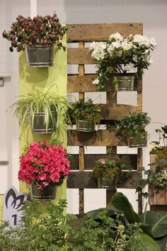 Great use of an old pallet for a garden wall