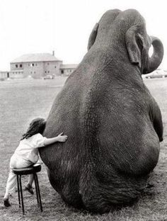 A circus Elephant and the trainer's daughter were the best of friends - Photo by John Drysdale, England, 1986.