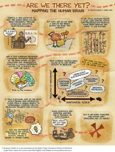 Confused by the BRAIN initiative? Here's a comic to help. Hunting for the Brain's Hidden Treasures: Scientific American -