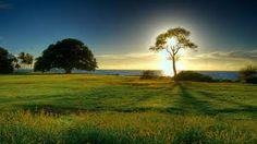 Bildergebnis für schönheit der natur