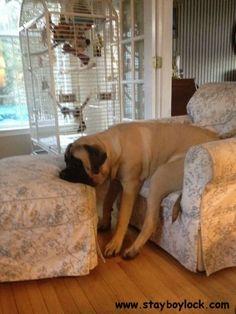 I had a hard day today!!!