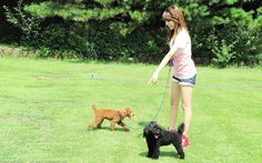 Sunny and her dogs #SNSD #Sunny