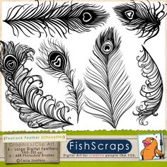 Peacock Tail Feather Silhouette Clip Art  - ABR Photoshop Brushes & PNG Stamps great for wedding invitations. $5.75, via Etsy.