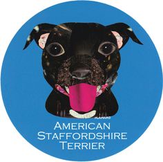 マイ @Behance プロジェクトを見る : 「005 | American Staffordshire Terrier」 https://www.behance.net/gallery/42195511/005-American-Staffordshire-Terrier