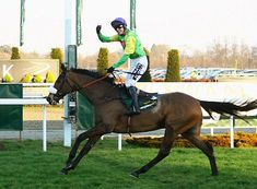 Two-time Cheltenham Gold Cup winner KAUTO STAR has been put down after suffering neck and pelvis injuries in a fall. The gelding won 23 of his 41 races, including five King George VI Chases. The 15-year-old moved to dressage after retiring from racing in 2012.