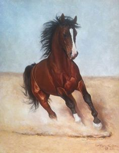 "Arabe horse ""oil on canvas"" 46 x 55 cm.  www.ortegaavila.com"