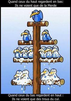 La hiérarchie : un mal nécessaire ?. #mdr #humour // www.drolementvotre.com