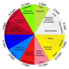 The Best time of the Day to Make Love (according to Chinese Medicine).
