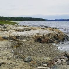 Rocky shores and pebble beaches  #barharbor #acadianationalpark #maine #camping #oceansounds #pebblebeach #montereylocals #pebblebeachlocals - posted by Kaylah Napolitan https://www.instagram.com/urban.alpenglow - See more of Pebble Beach at http://pebblebeachlocals.com/
