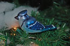 Old World Christmas Ornament - Blue Jay