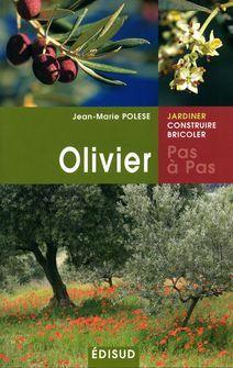 Planter un olivier dans mon jardin - Côté Maison Planter Olivier, Comment Planter, Jean Marie, Movie Posters, Gardens, Plants, Film Poster, Billboard, Film Posters