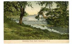 The Ice House at Zabriskie's Pond ~ North Hackensack, NJ