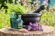 """""""La utilidad de las plantas medicinales para la pérdida de peso"""""""