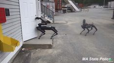 Massachusetts State Police Tested Out Boston Dynamics' Spot The Robot Dog. Civil Liberties Advocates Want To Know More - Hope For Our Times