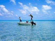 #Fishing at #Tevakaroa Villas #Rarotonga #CookIslands #turquoisewater