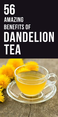 Benefits of Dandelion Tea: The tea not only provide you with instant energy but also with many health benefits.