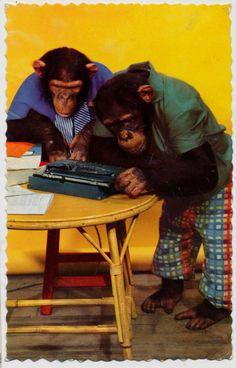 monkeys on old postcards