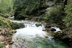 flowing water in Sava river in Vintgar Gorge, Slovenia