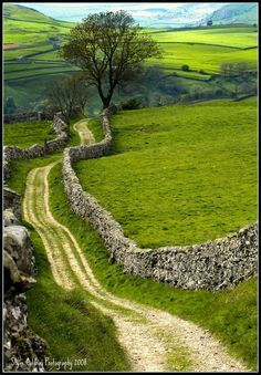 Country lane found in the North Yorkshire Dales by Steve Coldray Photography on…