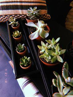 Ideas For Instagram Photos, Creative Instagram Stories, Insta Photo Ideas, Grunge Photography, Tumblr Photography, Nature Photography, Sunset Wallpaper, Tumblr Wallpaper, Photography Editing Apps