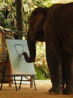 Elephant Painting an Elephant, Thailand truly these animals could not be any more amazing. i love elephants Alpacas, Beautiful Creatures, Animals Beautiful, Funny Animals, Cute Animals, Elephant Love, All Gods Creatures, Gentle Giant, Pet Birds