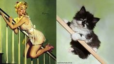 chats pin-up