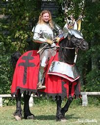 Living History Horse Costumes, Animal Costumes, Carrot Ideas, Show Horses, Pixies, Mirror Mirror, Fancy Dress, Sword, Dragons