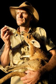 Worth bottling: Kangaroo Dundee documents Chris 'Brolga' Barnes' dedication to the welfare of orphaned joeys on his Northern Territory sanctuary.
