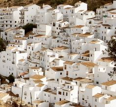 20 of the most beautiful places to visit in Spain Andalucia, Pueblos-Blancos - Most most beautiful places to visit in Spain Beautiful Places To Visit, Wonderful Places, Cool Places To Visit, Places To Travel, Amazing Places, The Places Youll Go, Places To Go, Andalucia Spain, Malaga Spain