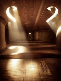 Inside of a double bass.